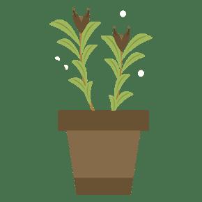 手绘绿色盆栽卡通植物花卉