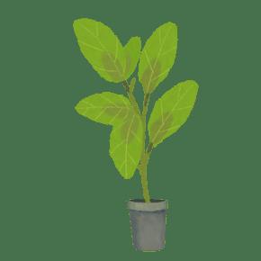 绿色手绘植物盆栽盆景