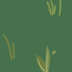 几株手绘卡通绿色小草装饰