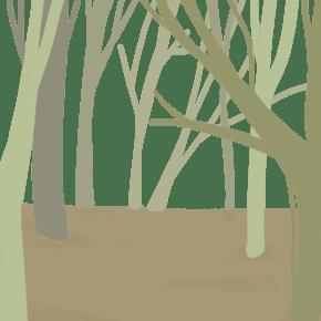 黄绿调森林背景手绘