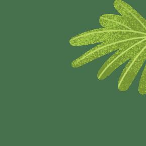 绿色卡通叶子免抠图