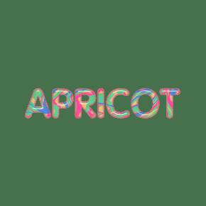 英文字母糖果色系立体字母APRICOT杏