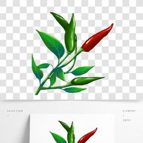 辣椒尖辣椒青色紅色小辣椒