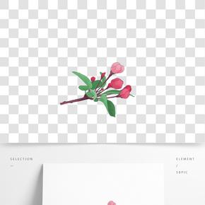 海棠花 花卉png素材免費下載