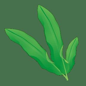 原创春天绿色水彩树叶