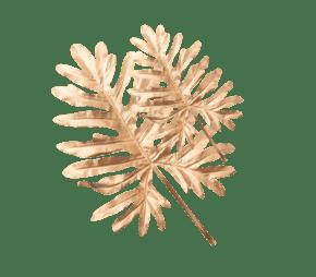 形状独特的金色叶子
