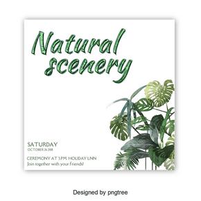 绿色自然风景抽象字体