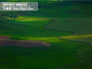 那纯绿色的天和地