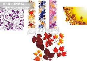 花纹素材 花边 枫叶矢量图