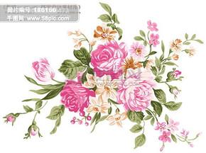 背景 底纹 花纹 花 花朵 艳丽 配色 精美 HanMaker韩国设计素材库