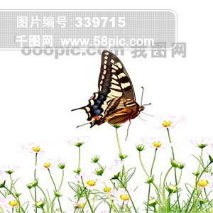 办公用品 光盘 电脑 笔记本 地球仪 女孩 人物 书本 抽象 蝴蝶 笔本 风景 表情 建筑物 PSD分层源文件 韩国花纹图库