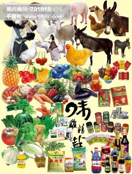 家畜 家禽 蔬菜 水果 调料 超市用品 动物 猪 羊 鸡 鸭 驴 蓝莓 樱桃图片
